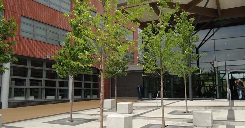 MidKent College - project image.jpg